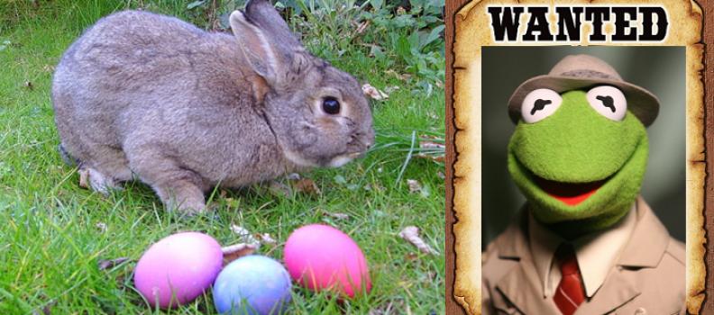 Flow's Easter Hunt